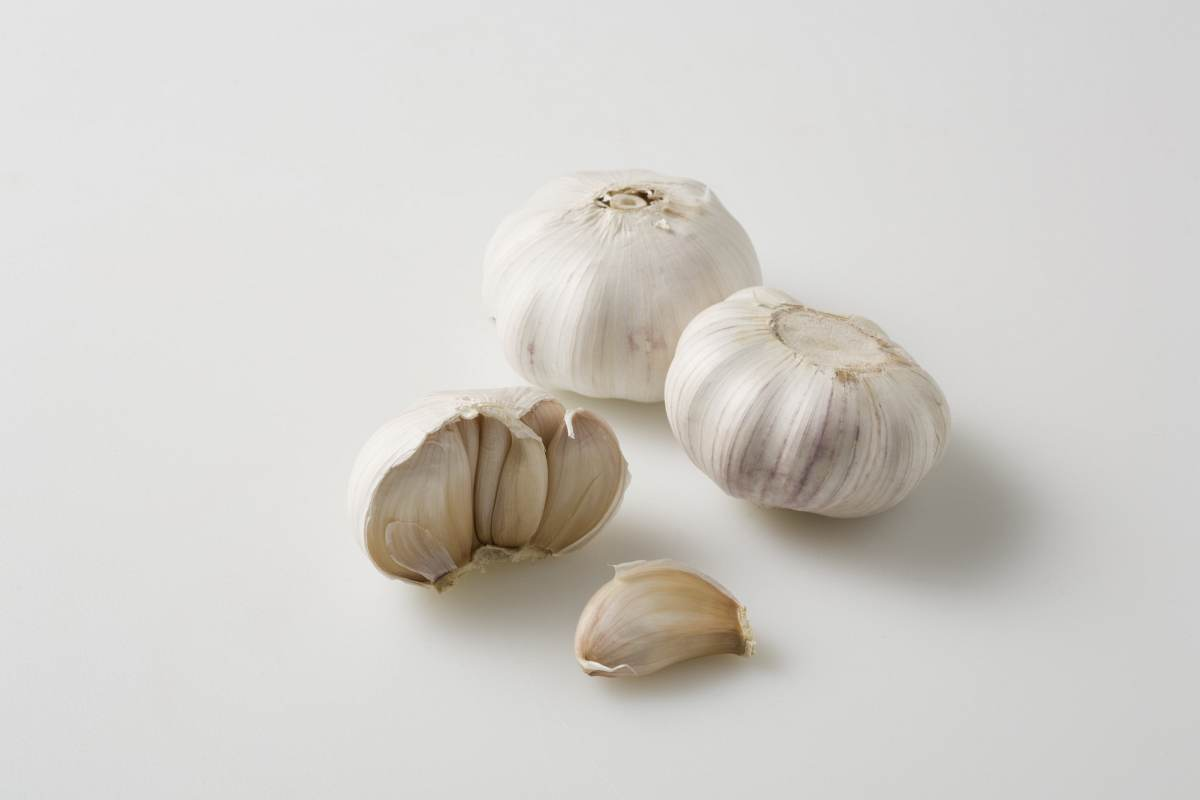 5 Things Hudson Valley Fall Garlic