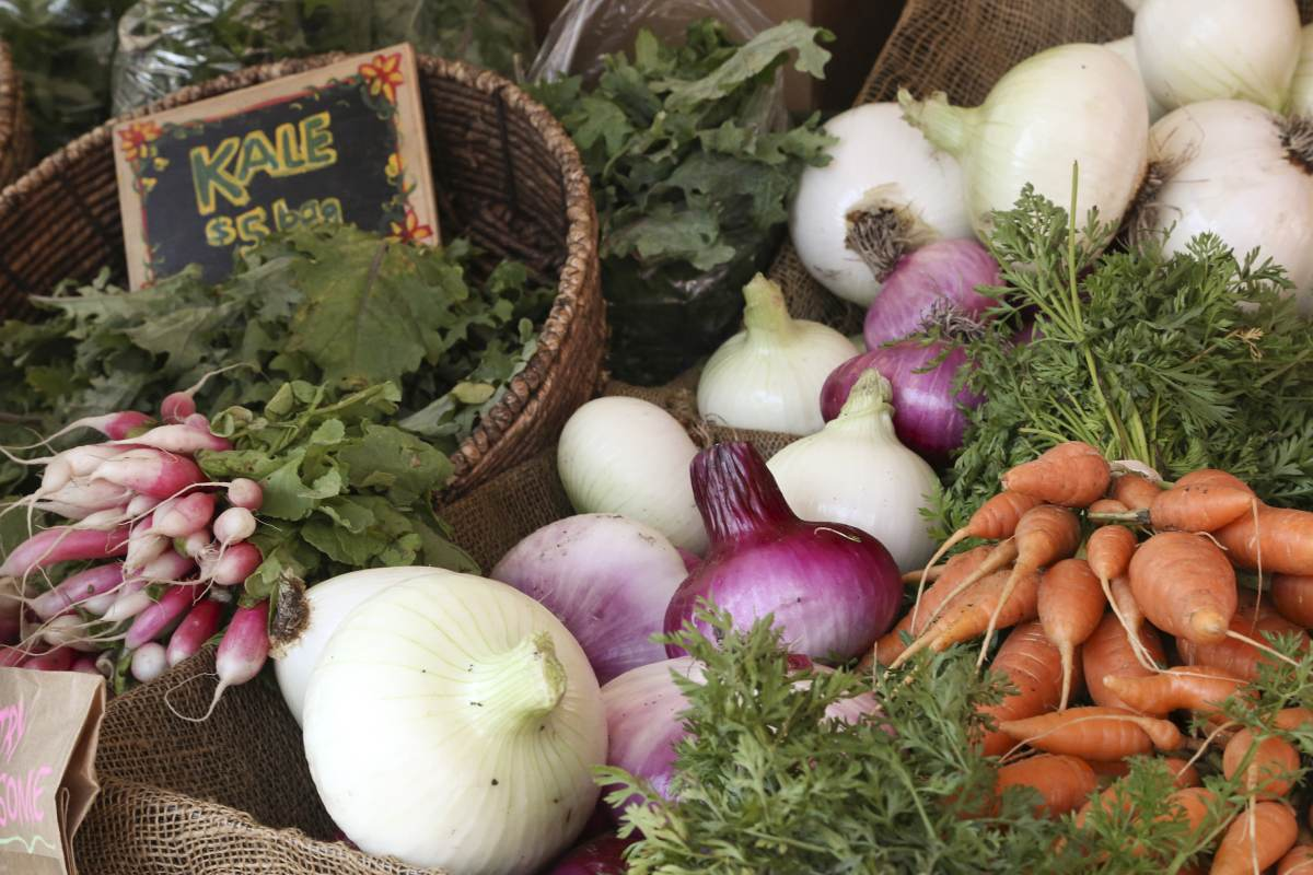 5 Things Hudson Valley Fall Farmer's Market