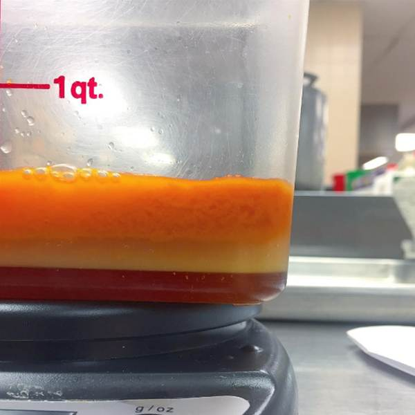 Science is delicious Carrot Sorbet