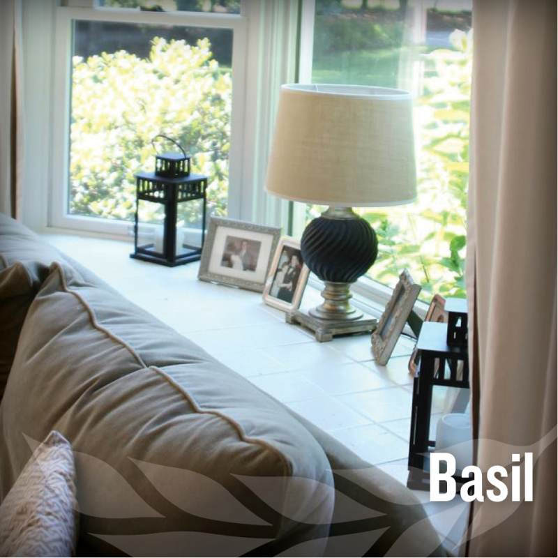 fathers day - Basil