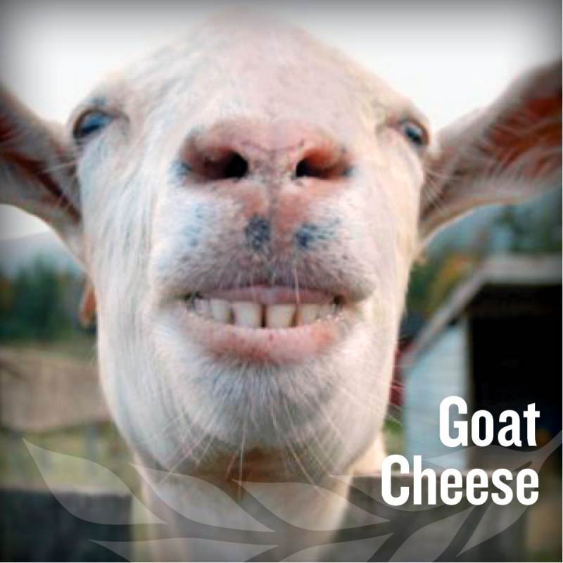 fathers day - Goat Cheese