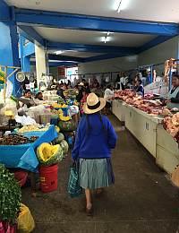 Global Cuisines and Cultures: Peru Trip 4