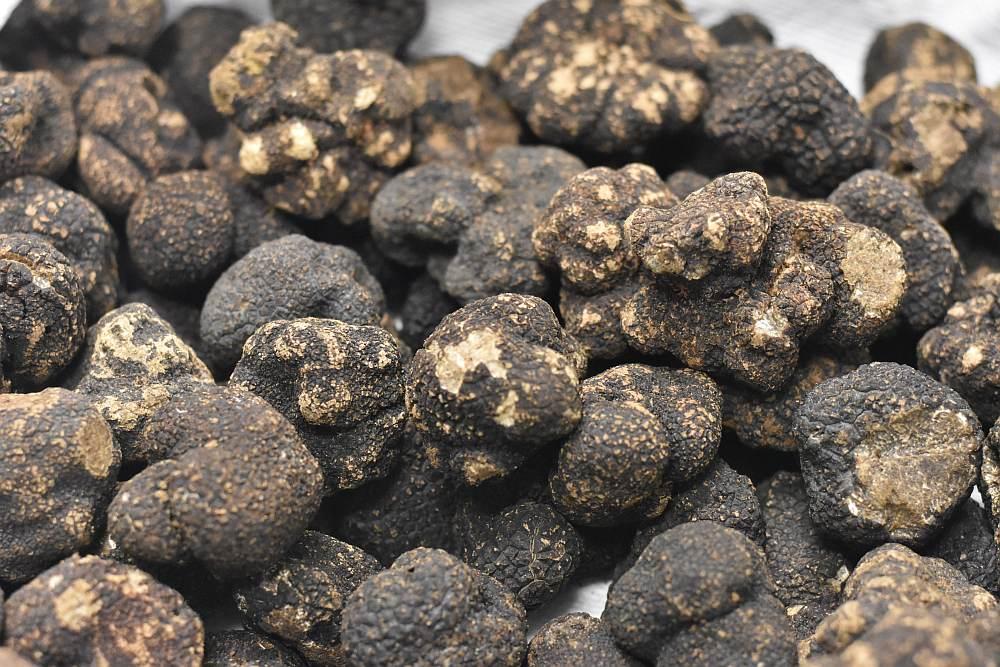 sabatino truffles image a