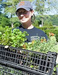 The Work Toward a Community Garden