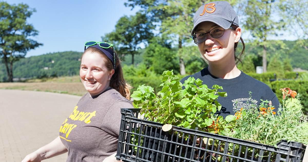 community garden image