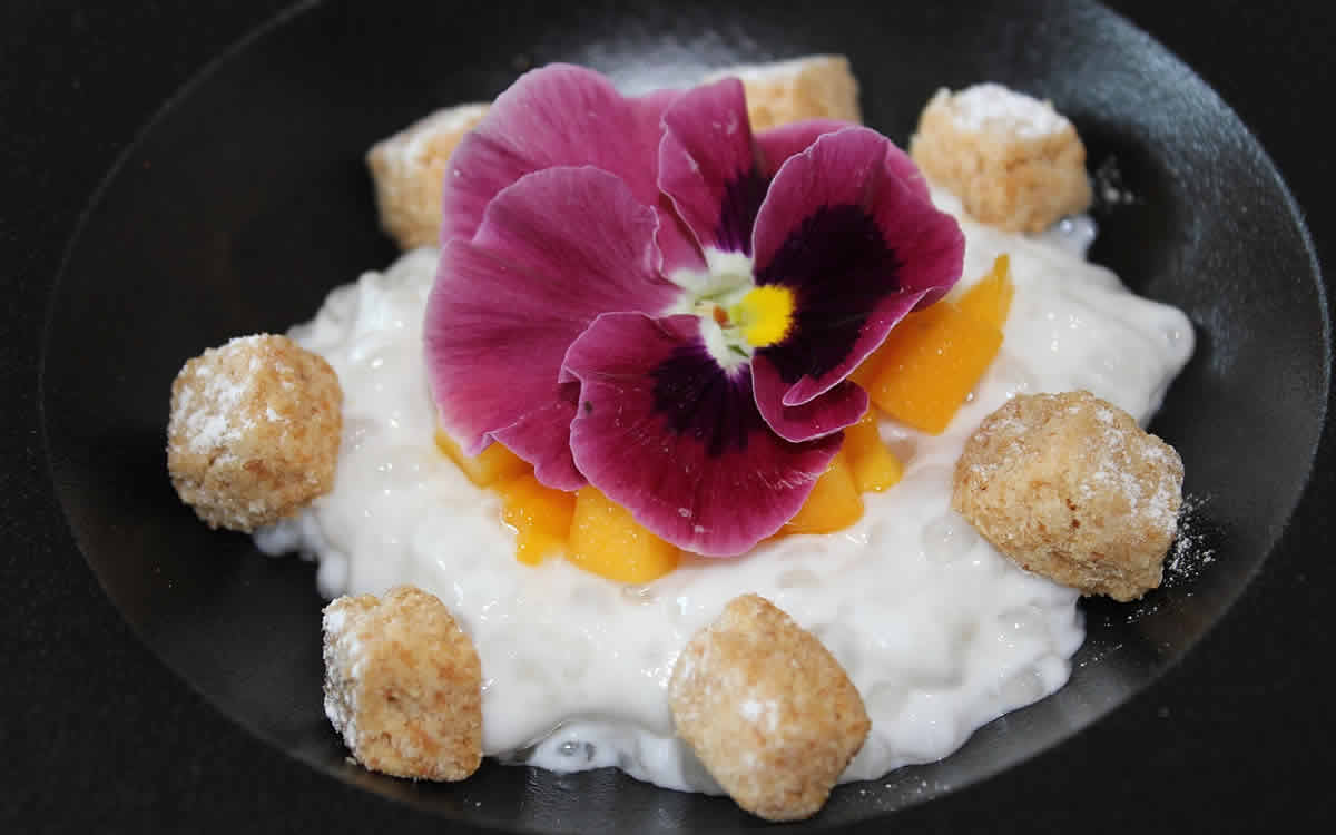 photo of tapioca dessert with flower on top