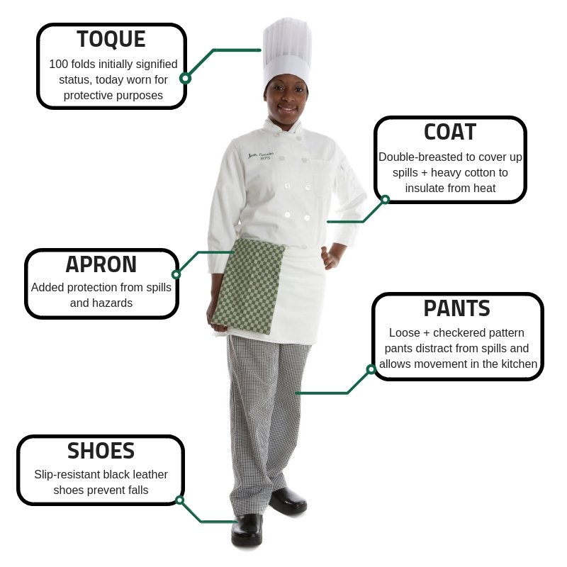 history-anatomy-chefs-uniform-infographic