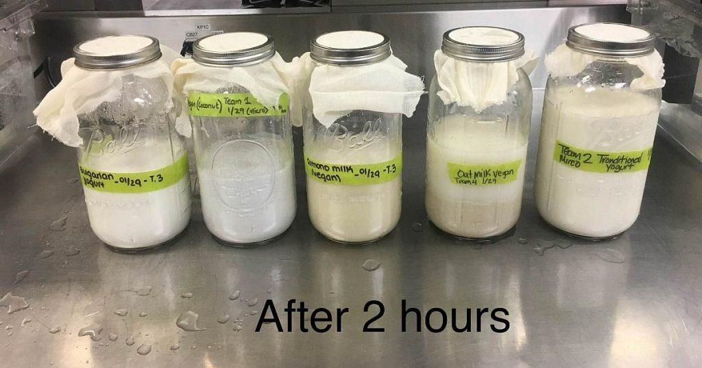 culinary food science yogurt tests 02 image