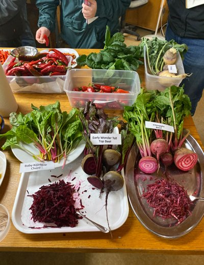 Farm to Table Concentration: Hudson Valley Visiting Camphill Village and The Stone Barns Center